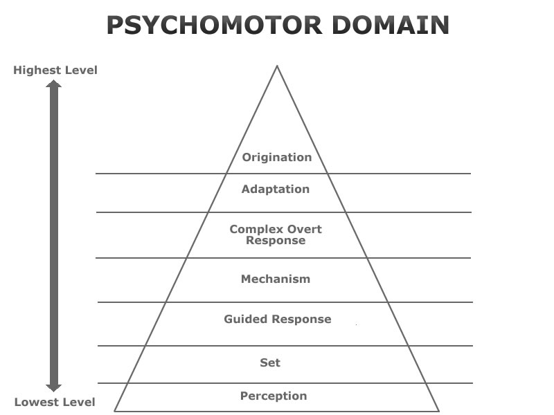 Cognitive Affective and Psychomotor Domains